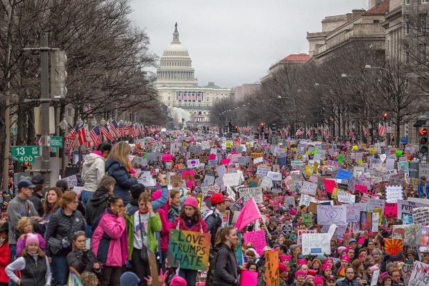1200px-women27s_march_on_washington_283259312374529